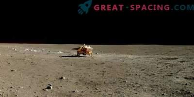 Il futuro apparato cinese consegnerà insetti e piante alla luna