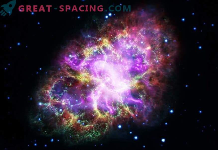 Osservazione integrata della nebulosa del granchio