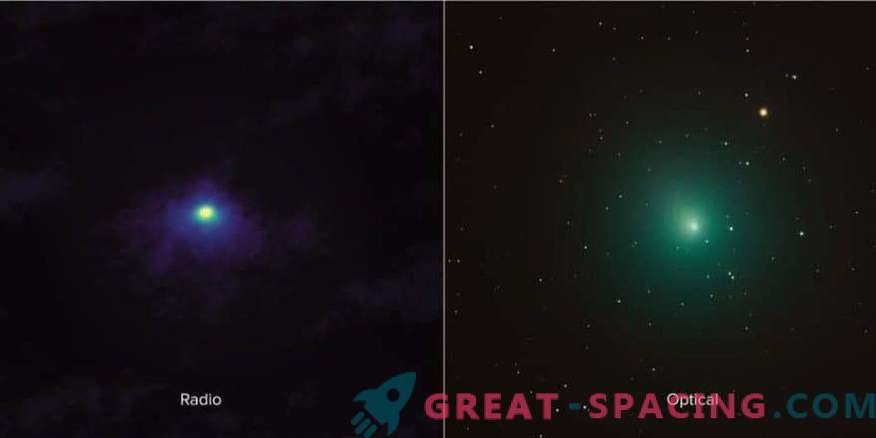 Primo piano di Comet 46P / Virtanen di ALMA