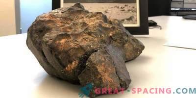 Il meteorite lunare è stato venduto per $ 600.000
