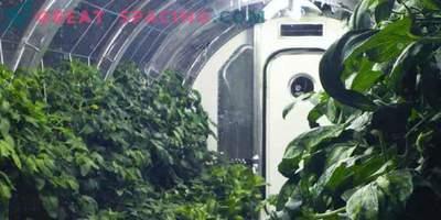 Proiectarea grădinilor marțiene