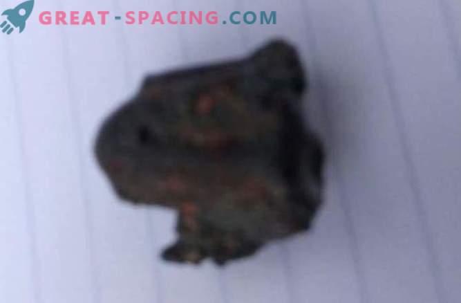 Un meteorite non ha ucciso una persona in India